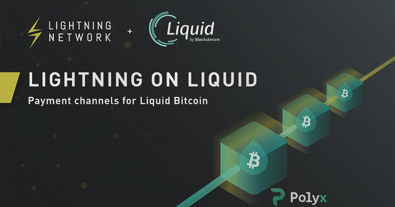 Lightning Network and Liquid Network technologies